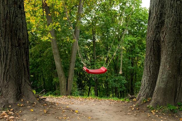 Rot schwingt zwischen zwei bäumen im wald, lustige outdoor-aktivität für kinder Premium Fotos