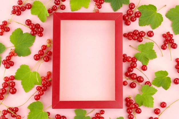 Rote johannisbeerbeere. beerenrahmen. Premium Fotos