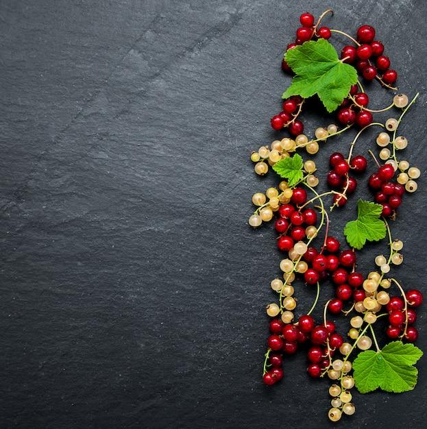 Rote johannisbeere mit blättern Premium Fotos