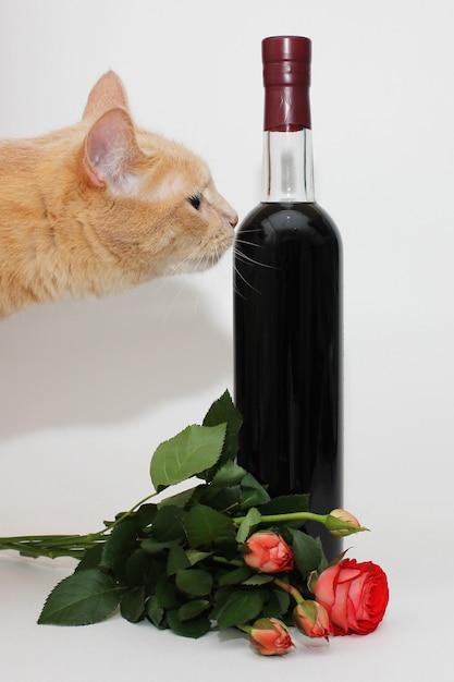 Rote katze schnüffelt eine versiegelte flasche dunkelroten weins in der nähe eines straußes kleiner rosen Premium Fotos