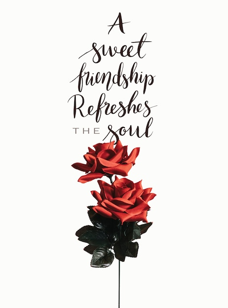 Rote rose mit einer nachricht zum valentinstag Kostenlose Fotos