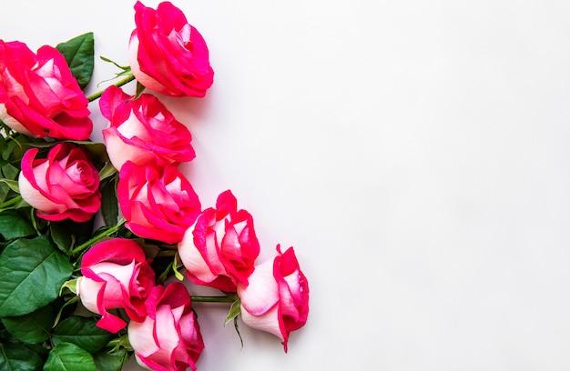 Rote rosen auf einem weißen hintergrund Premium Fotos