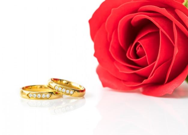 Rote rosen und goldringe auf weiß Premium Fotos