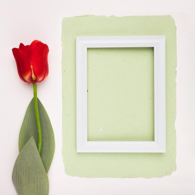 Rote tulpe nahe dem weißen holzrahmen auf grünbuch über weißem hintergrund Kostenlose Fotos