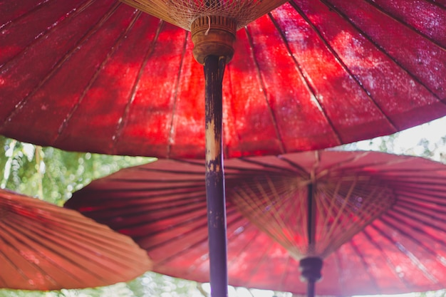 Roter regenschirm im garten Premium Fotos