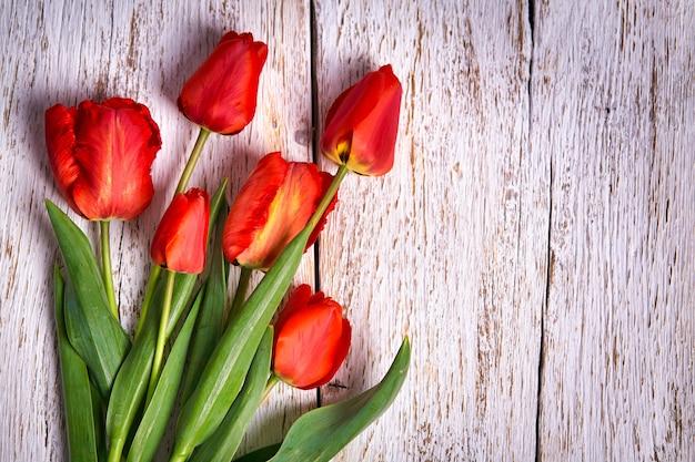 Roter tulpenstrauß über weißem holztischhintergrund mit kopienraum Premium Fotos