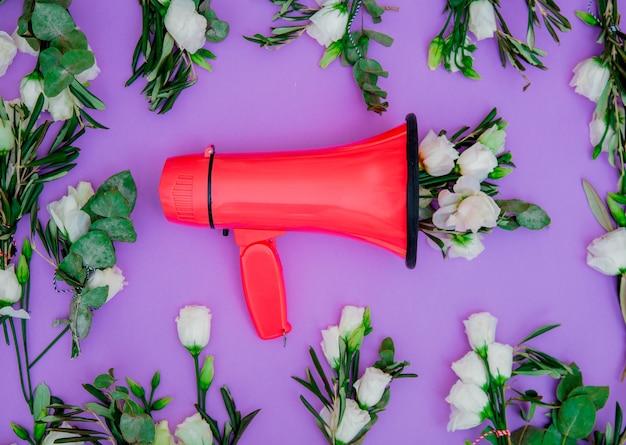 Rotes megaphon und weiße rosen auf purle hintergrund. ansicht von oben Premium Fotos