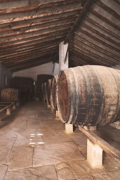 Rotweinfässer gestapelt im alten keller des weinguts in spanien, alicante Premium Fotos