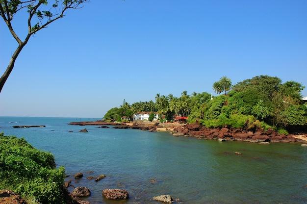 Rückwasserinsel Premium Fotos