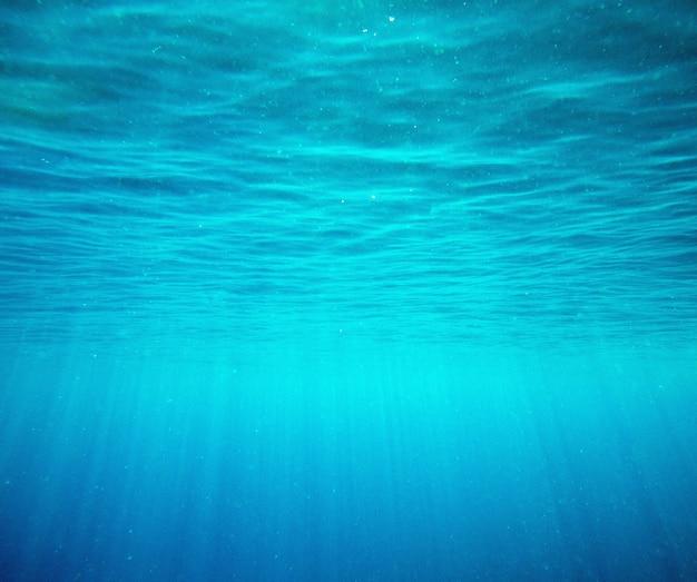 Ruhige unterwasserszene mit kopierraum Premium Fotos