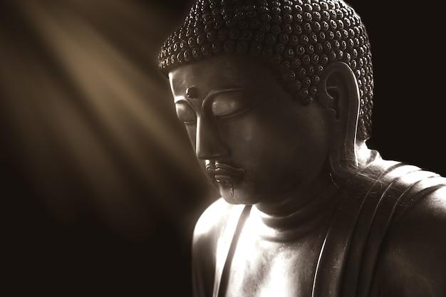 Ruhiger buddha mit licht der klugheit, ruhige asiatische buddha-zen-tao-religionskunst-artstatue Premium Fotos