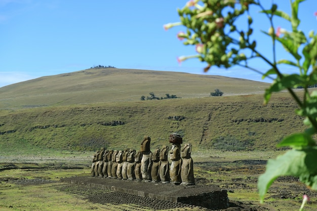 Ruine ahu tongariki moai mit poike-vulkan auf hintergrund, osterinsel oder rapa nui, chile Premium Fotos