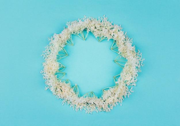 Runder mit blumenrahmen von weißen holunderbeerblumen auf blauem pastell, draufsicht Premium Fotos