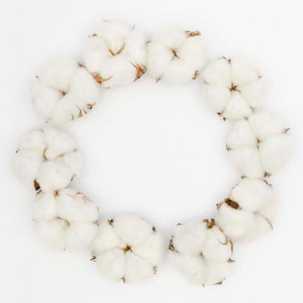 Runder rahmen der draufsicht mit weißer baumwollblume Kostenlose Fotos