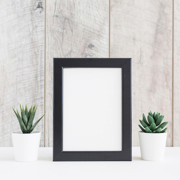 Saftige anlage im weißen topf zwei mit dem leeren bilderrahmen gegen hölzerne wand Kostenlose Fotos