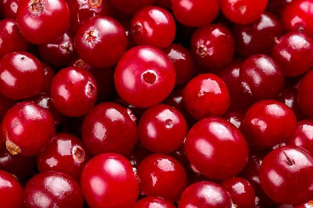 Saftige frische preiselbeeren. rote preiselbeeren Premium Fotos