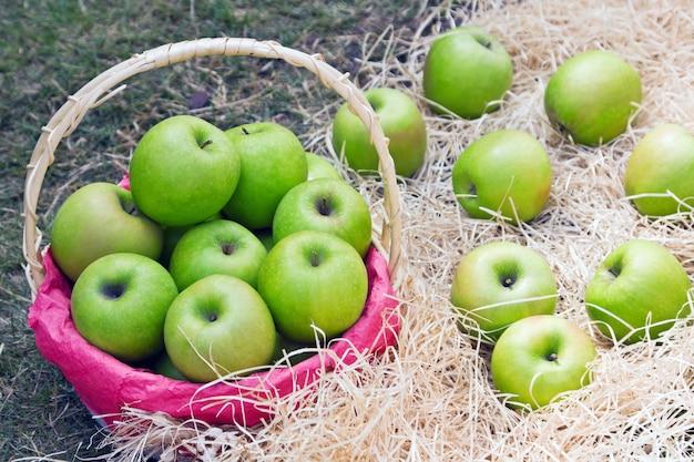 Saftige grüne äpfel im korb Premium Fotos