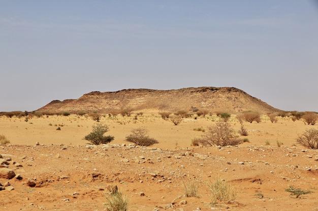 Sahara wüste im sudan Premium Fotos