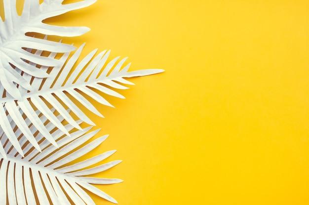 Sammlung von weißen tropischen blättern und laubpflanze Premium Fotos