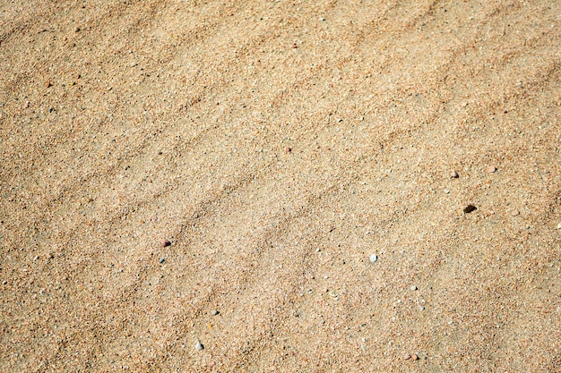 Sand am strand am sonnigen tag Premium Fotos