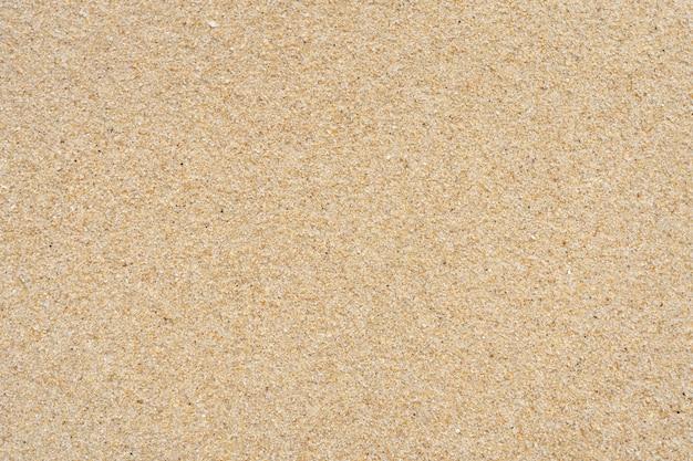 Sand textur am strand. zerkleinerte muscheln Premium Fotos
