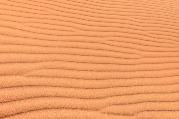 Sandwüstenhintergrund mit windkräuselung Premium Fotos
