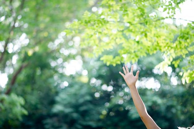 Saubere weiße hände des mädchens Premium Fotos