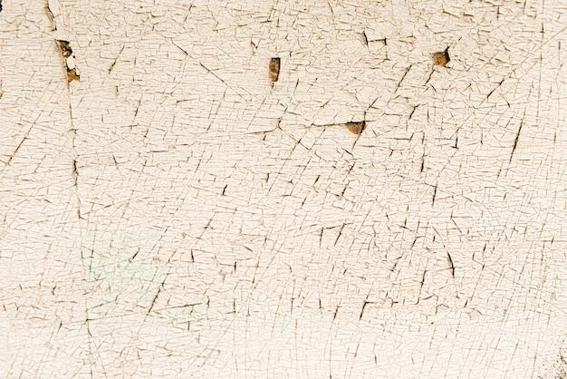 Schalenfarbe auf einem alten bretterboden Kostenlose Fotos