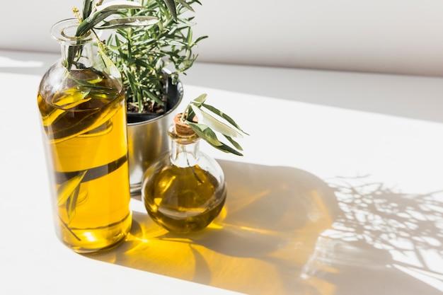 Schatten von olivenölflaschen mit rosmarinflasche auf dem boden Kostenlose Fotos