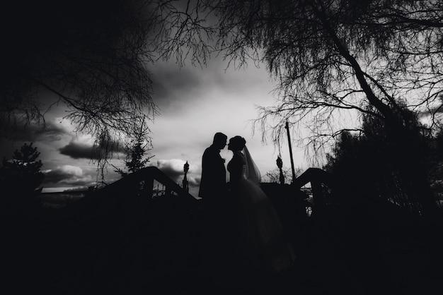 Schattenbild von paaren in der liebesbraut und -bräutigam am hochzeitstag Premium Fotos