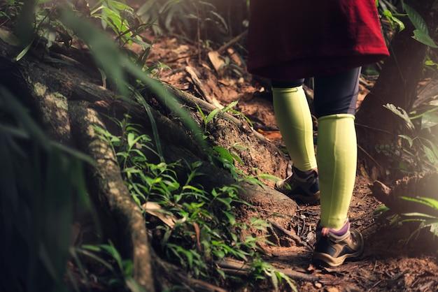 Schließen sie herauf asiatischen frauen-wanderer im wald im urlaub Premium Fotos