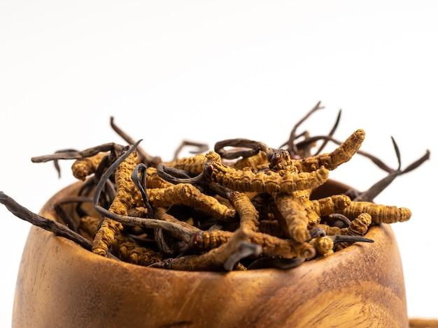 Schließen sie herauf cordycep sinensis oder pilz cordyceps auf hölzerner schüssel Premium Fotos