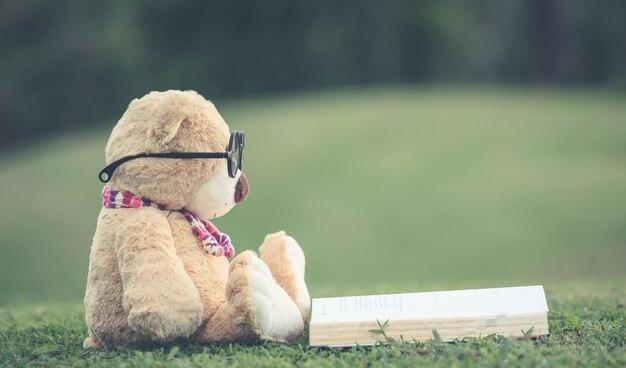 Schließen sie herauf den reizenden braunen teddybären, der auf rasenfläche sitzt Premium Fotos