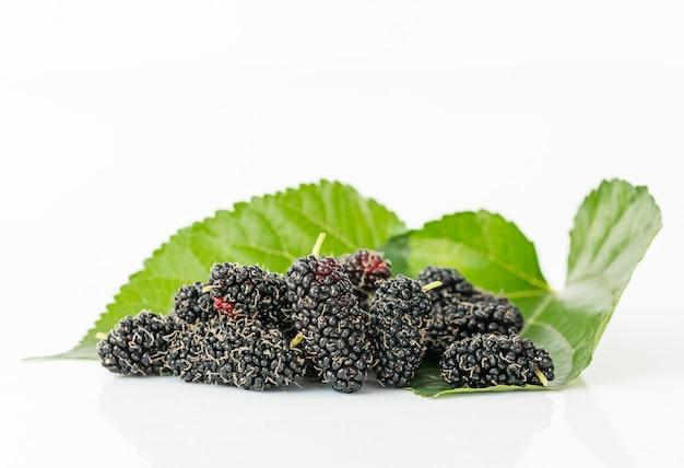 Schließen sie herauf maulbeerfrucht mit grünem blatt Premium Fotos