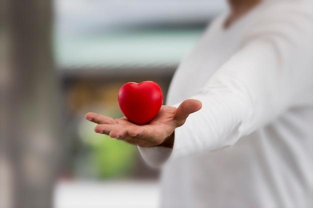 Schließen sie oben vom roten hirsch in der hand für jemanden, um zu lieben, geben sie liebe aufrichtig Premium Fotos