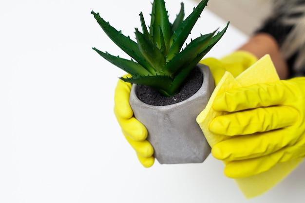 Schließen sie oben von der arbeiterhand, die staub im büro in den gelben handschuhen abwischt Premium Fotos