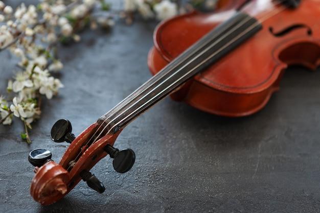 Schließen sie oben von der niederlassung der blühenden kirsche und der violine auf grauem hintergrund Premium Fotos