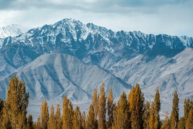 Schnee-bergblick von leh ladakh district, nordteil von indien Premium Fotos