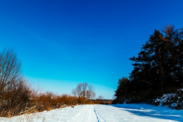 Schneebedeckte landschaft des winters gegen blauen klaren himmel Kostenlose Fotos