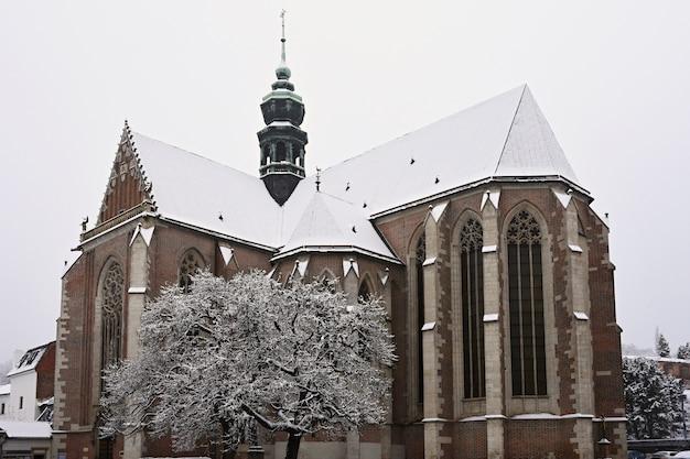 Schöne alte tempelkirche. basilika der himmelfahrt. jungfrau maria. brno tschechische republik. (basilika klein) winterlandschaft - frostige bäume. Premium Fotos
