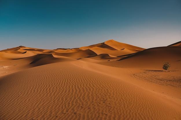 Schöne ansicht der ruhigen wüste unter dem klaren himmel gefangen in marokko Kostenlose Fotos