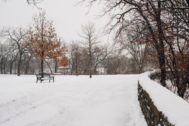 Schöne aufnahme des mit schnee bedeckten parks an einem kalten wintertag Kostenlose Fotos