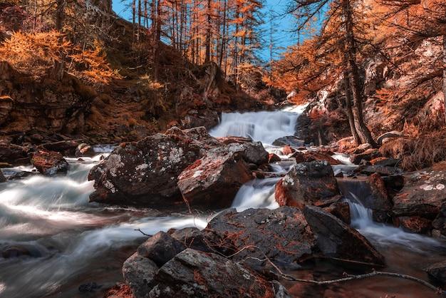 Schöne aussicht auf die herbstlandschaft und einen wasserfall in einem wald Kostenlose Fotos