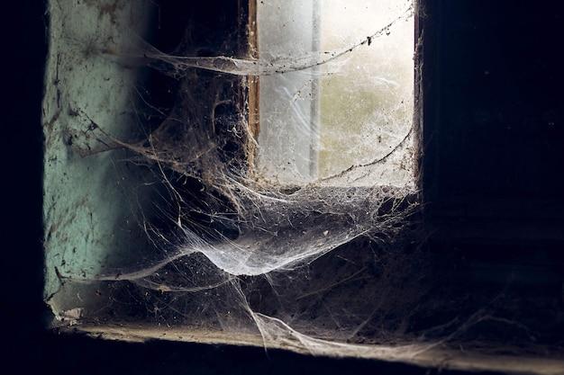 Schöne aussicht auf fenster mit spinnweben in einem alten verlassenen gebäude bedeckt Kostenlose Fotos