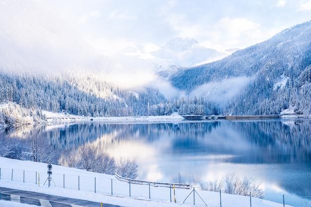 Schöne bäume in der winterlandschaft am frühen morgen im schneefall Kostenlose Fotos