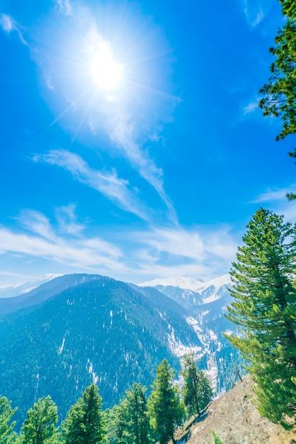 Schone Baum Und Schnee Bedeckt Berge Landschaft Kaschmir Staat