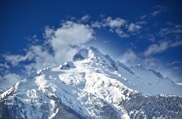 Schöne berglandschaft in kanada Premium Fotos