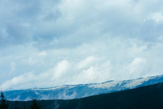 Schöne berglandschaft mit waldnaturpark und cloudscape Kostenlose Fotos