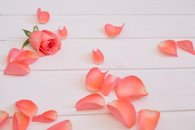 Schöne blütenblätter einer lachsfarbe über einem weißen holztisch angeordnet Kostenlose Fotos