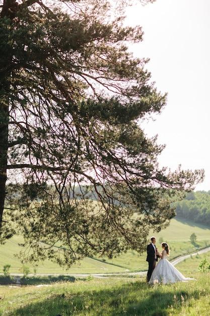 Schöne bräute stehen im sommer unter einem baum Kostenlose Fotos